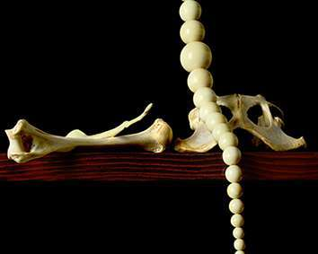 Subversive-ad-for-ivory-necklace-2